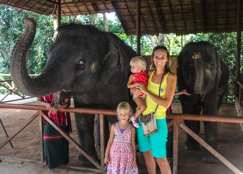 Elephant trek Thailand