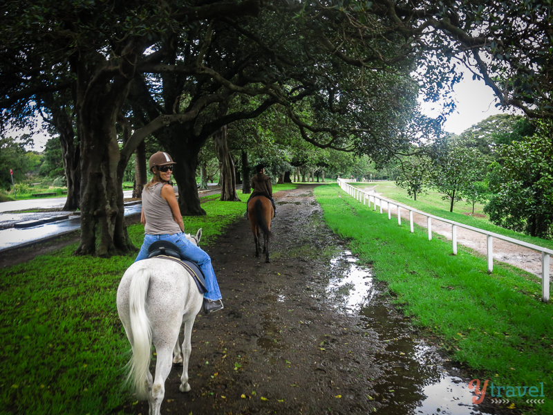 horse riding in Centennial Park  Sydney