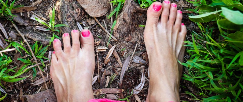 Earthing in the forest