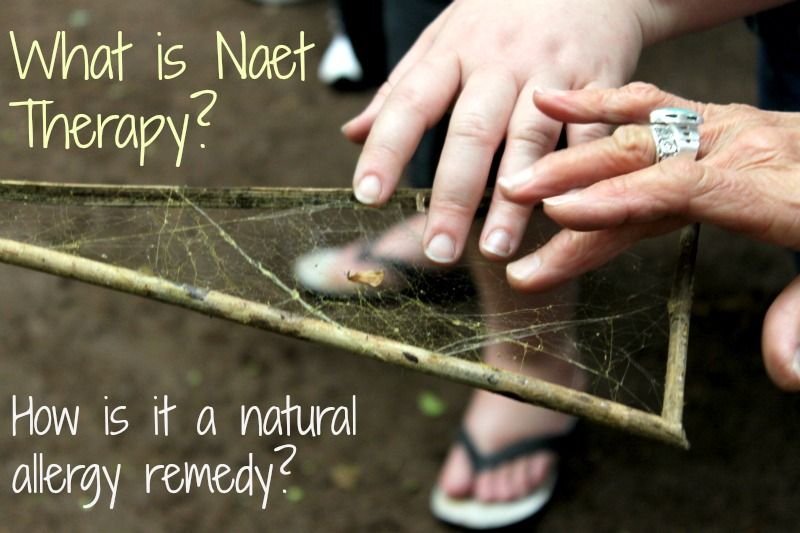 What is naet therapy
