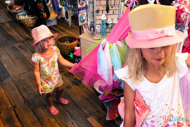 Central Tilba shopping (1)